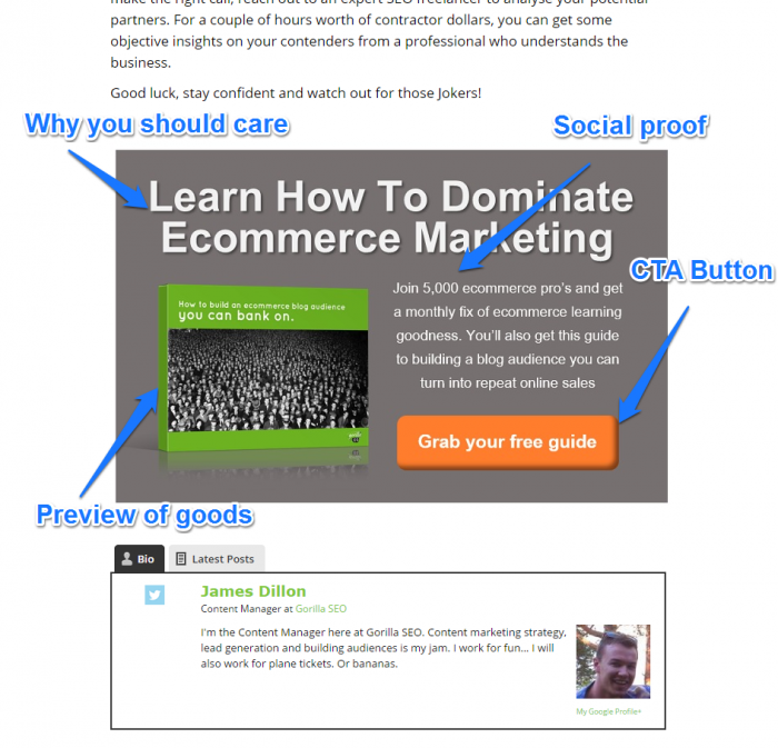 Gorilla SEO Successful Business Blog CTA Example