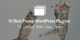 10 Popup WordPress Plugins To Convert More Subscribers